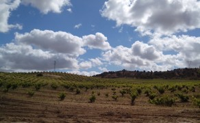 Visita Bodega Estancia Piedra (D.O. Toro)