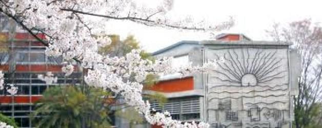 Beca Nanzan Summer Japanese Program (June 7 – July 19)