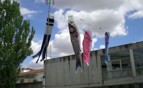 Semana cultural en Santa Marta