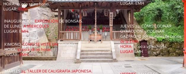 VII Semana de Japón de Santa Marta de Tormes