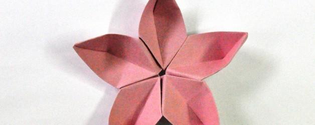 Taller de origami. Manuel Carrasco